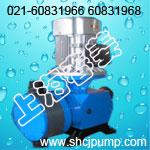 JMZ系列精密隔膜式计量泵