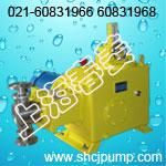 J-DR系列柱塞式计量泵